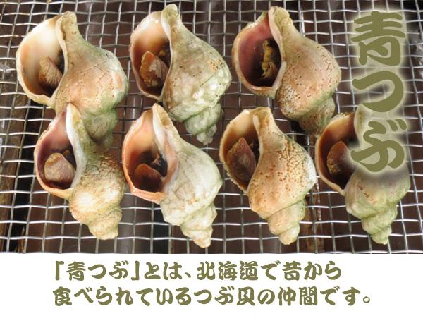 青つぶ 「青つぶ」とは、北海道で昔から食べられているつぶ貝の仲間です。