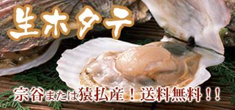 生ホタテ (宗谷または猿払産 送料無料)