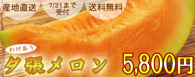 【産地直送】訳あり(個撰) 夕張メロン 約1.6kg×2玉【送料無料】